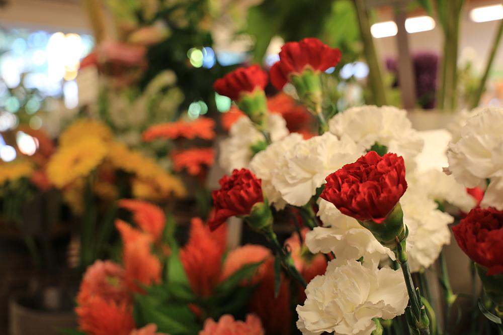 Blumensprache Was Blumen Sagen Meyers Blumenzeit
