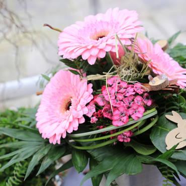 Blume des Monats April: die Gerbera!