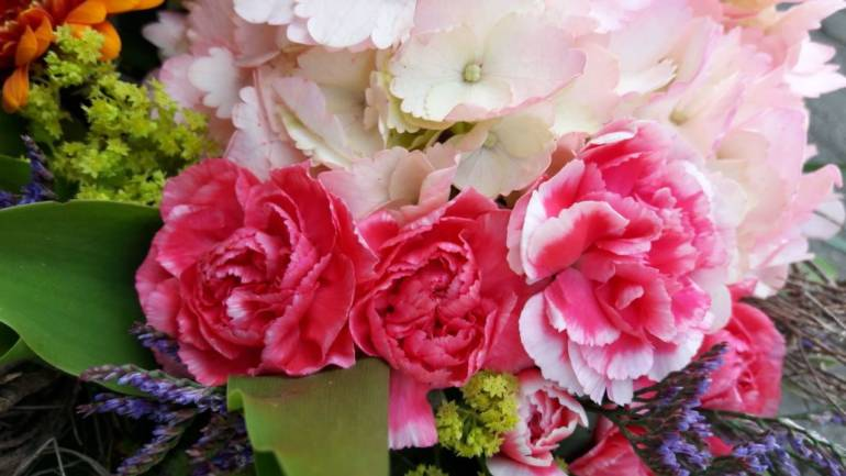 Skurril und lustig: Außergewöhnliches Wissen über Blumen!